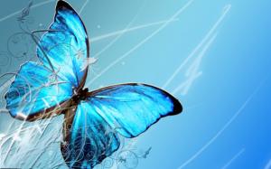Mariposa-pequeña